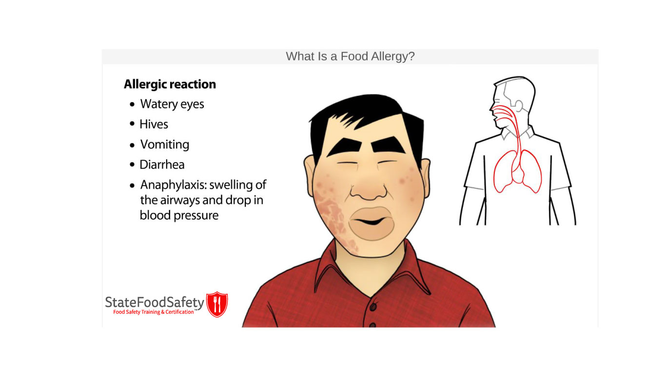 Slide showing animated allergic reaction