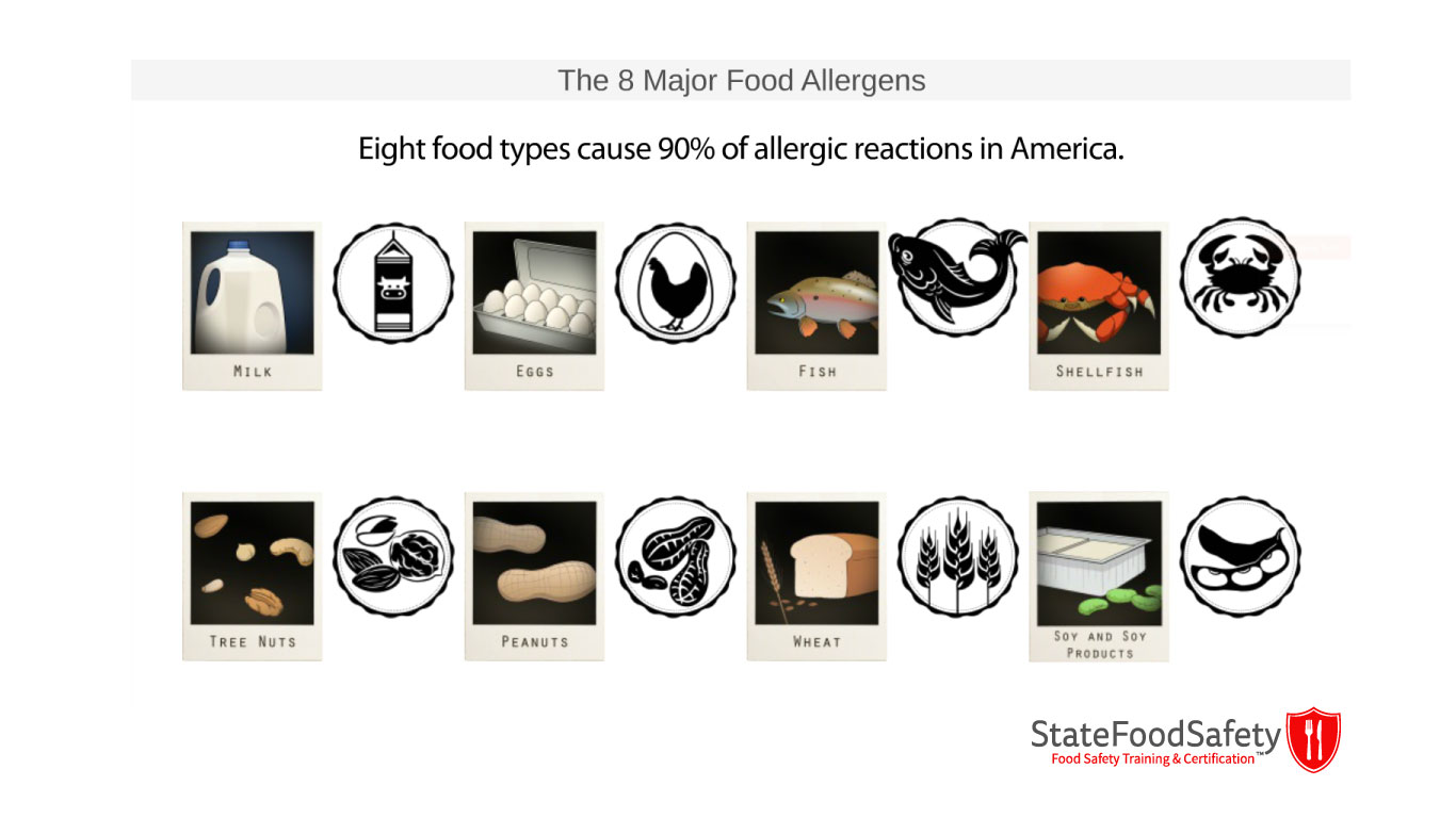 Display of 8 Major Food Allergens